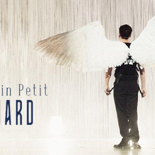 Le Vilain Petit Canard nouveau spectacle cover